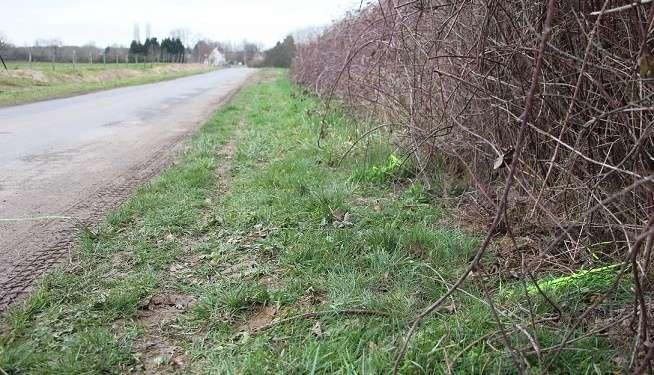 Les gendarmes ont tracé des repères sur les lieux pour les besoins de l'enquête.