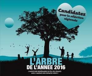2016--arbre-de-l-annee