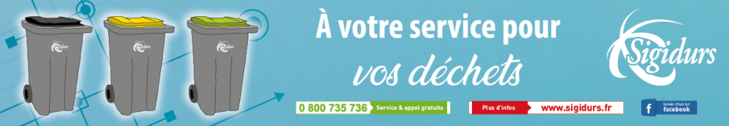 Sigidurs Banniere comm generale janvier 2019